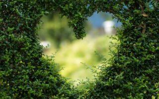 Magiczny ogród z Gervasoni